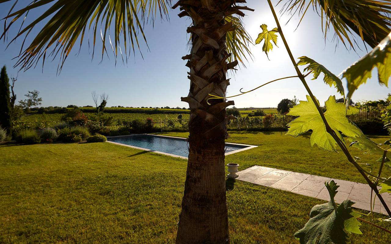 Swimming pool in the middle of the lawn, hérault villa rental, Domaine et Demeure