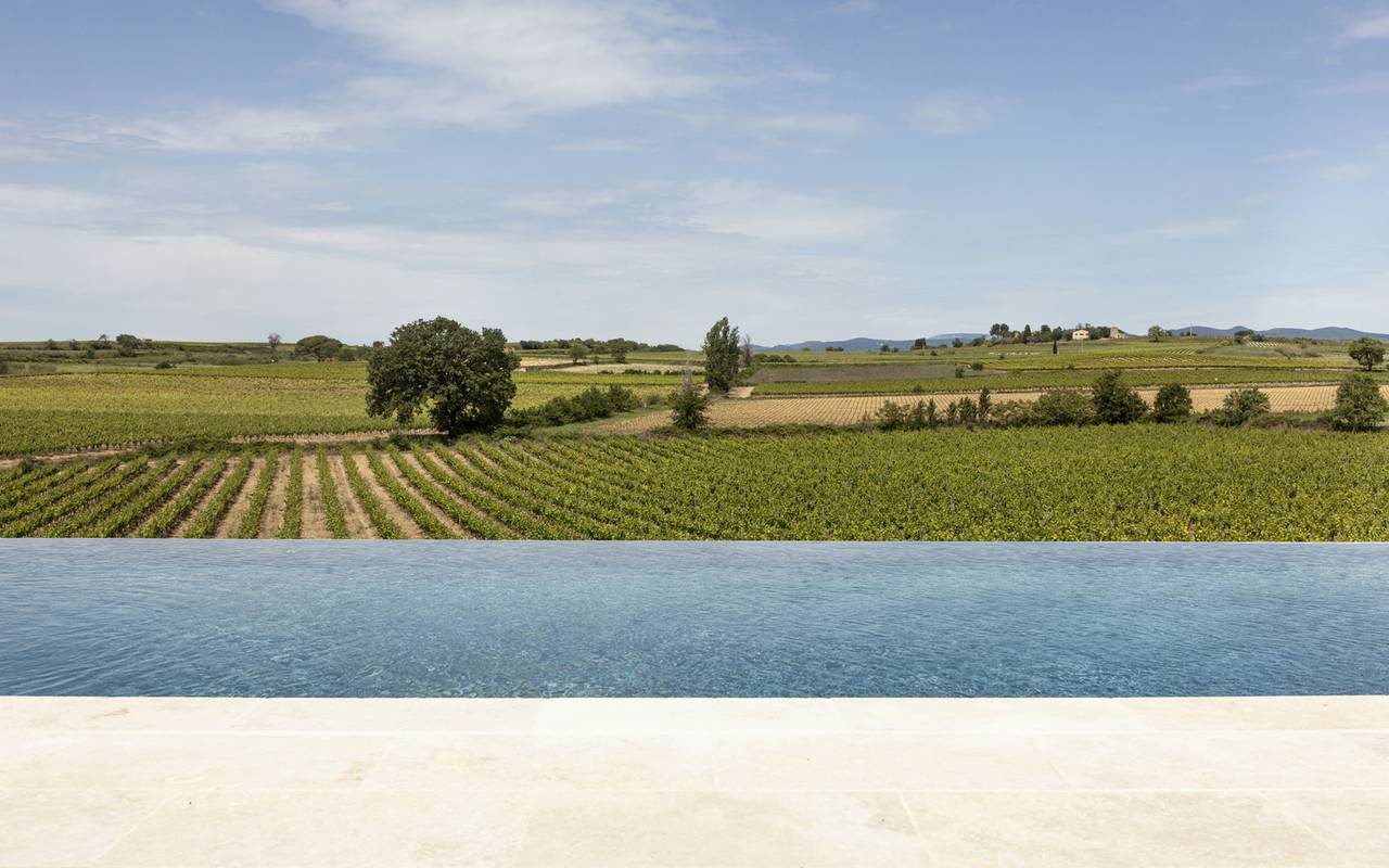 Swimming pool and vines, Hotel Occitanie and Narbonne, Domaine et Demeure