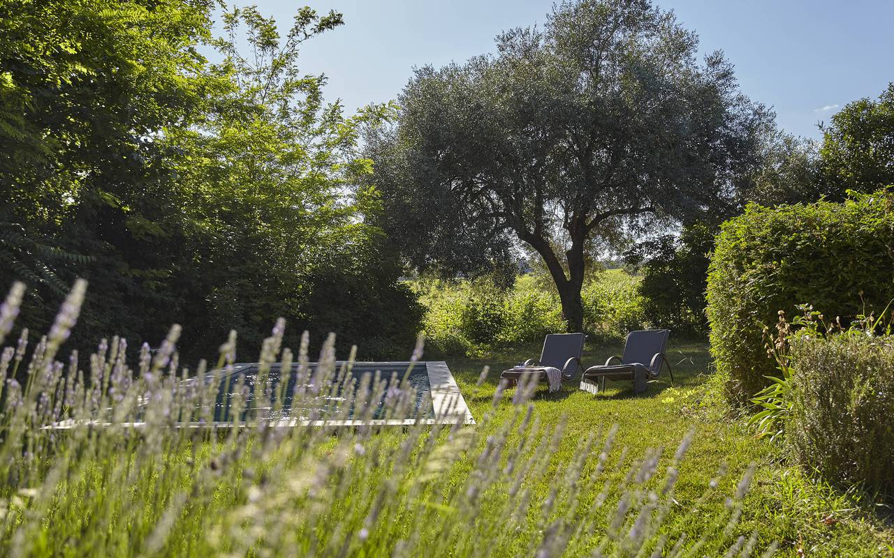 jardin discret avec piscine, location maison herault, château les carrasses