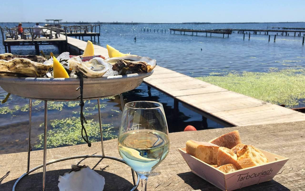 Dégustation d'huîtres au bord de l'eau, vignoble languedoc, Domaine et Demeure