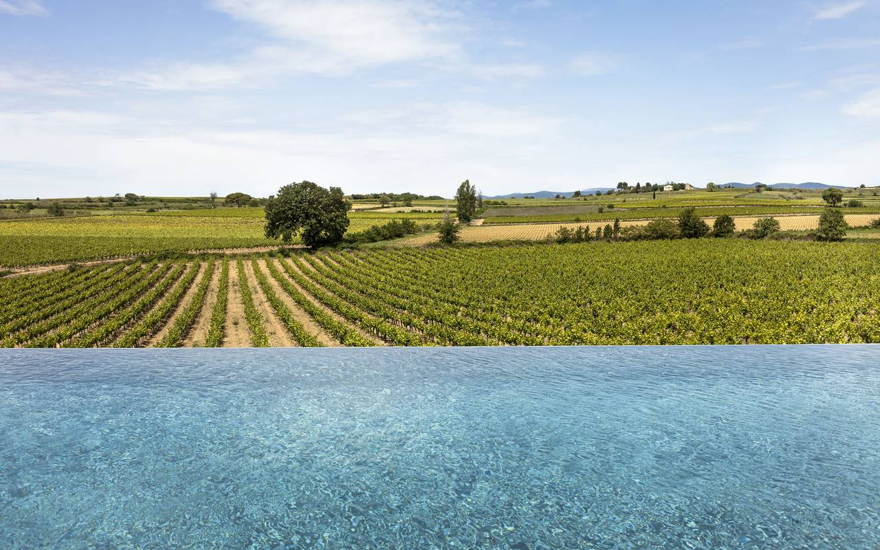 piscine au bord des vignes, vignoble languedoc, Domaine et Demeure